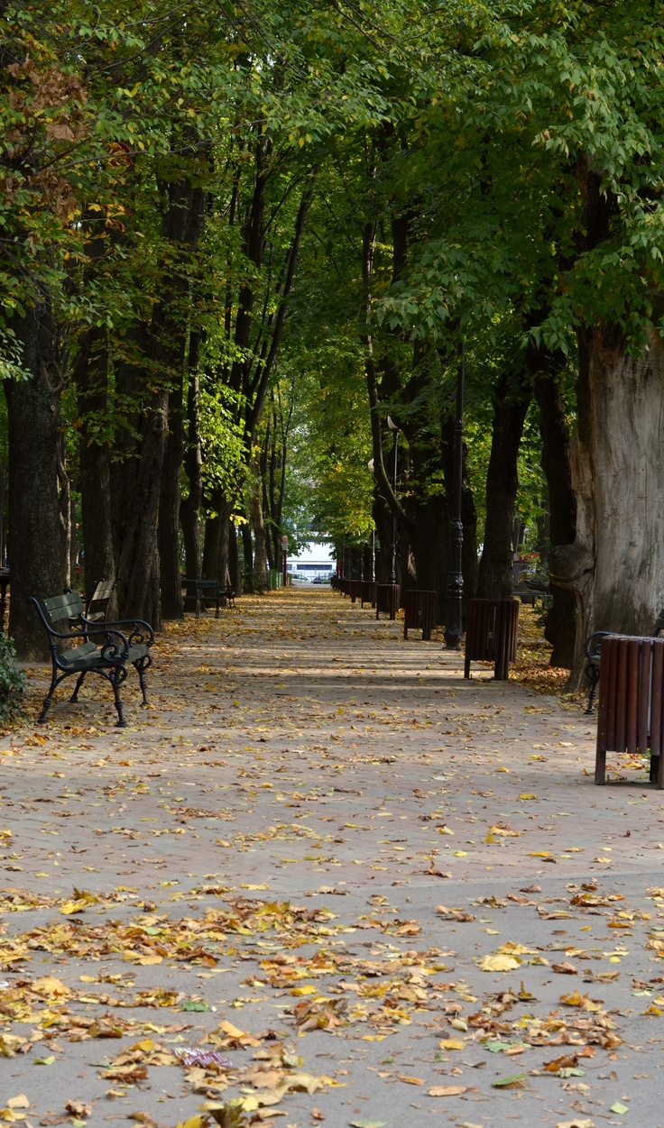 Warm autumn in Expo Park - Iasi, Romania