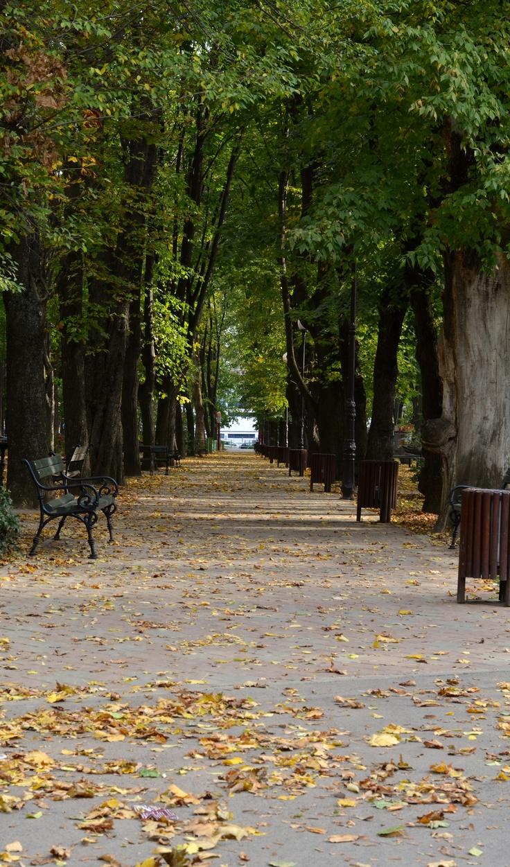 Warm autumn in Expo Park - Iasi, Romania