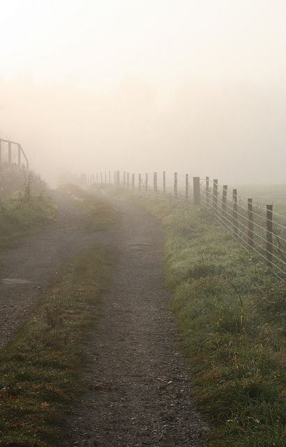 How great it would be to go for a bike ride or a walk each misty morning on a farm or in the country.