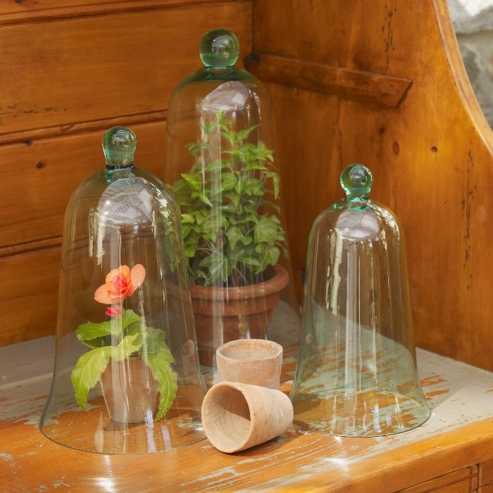 Garden cloche set you could also use glass candle for Garden cloche designs