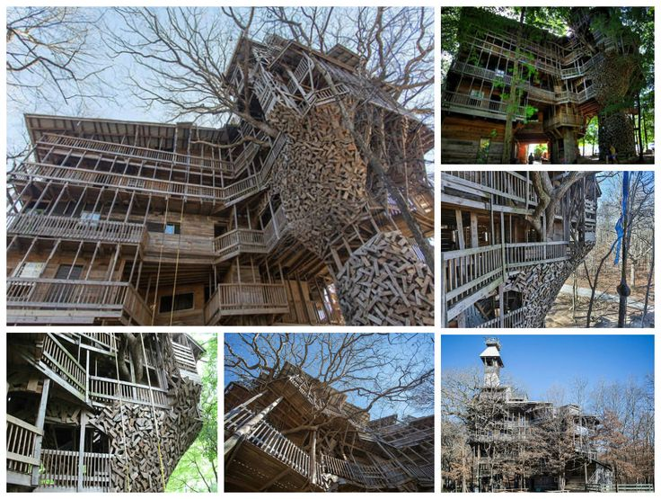 Biggest Treehouse In The World Inside 413 best architecture design & portfolio images on pinterest