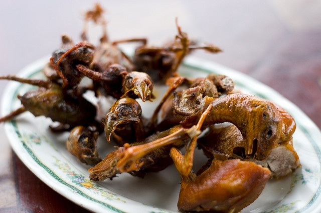 cambodia fried birds you can eat most of the bird it s fried crisp ...