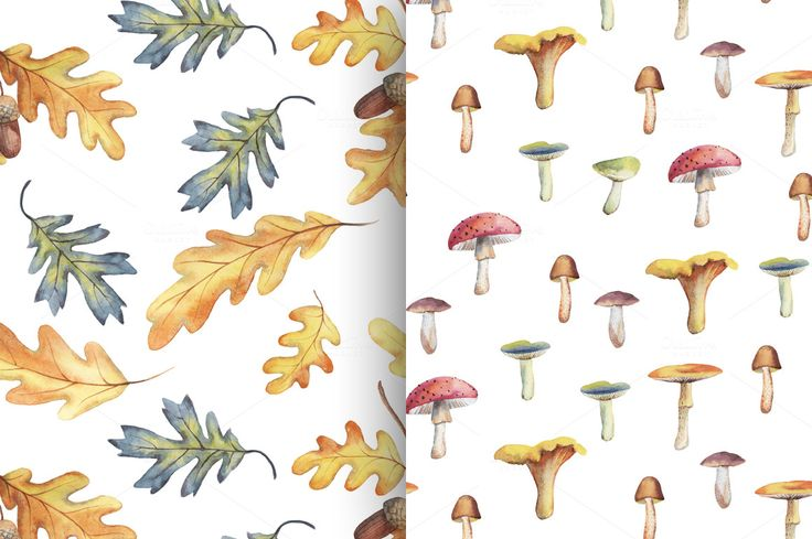 Autumn watercolor patterns by colibri on @creativemarket
