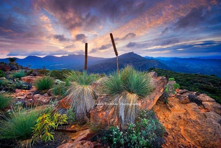 Mt Ohlssen-Wilpena Pound, Flinders Ranges, South Australia