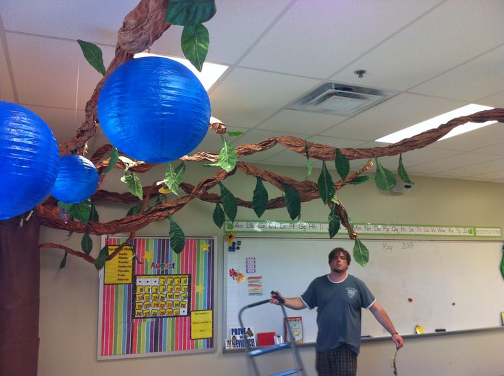 Fall Classroom Ceiling Decorations ~ Best images about classroom tree display ideas on