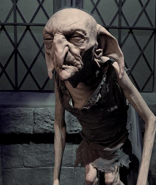 Dit is Knijster, een huis-elf. Hij is de huis-elf van Harry Potter. Eerst was hij van Sirius Zwarts, Harry's peetvader, maar toen Sirius stierf, werd Knijster de huis-elf van Harry Potter. Hierdoor moet Knijster, met tegenzin, alles doen wat Harry hem beveelt. Knijster en Harry kunnen niet goed met elkaar opschieten. In het boek beveelt Harry dat Knijster, samen met Dobby, Draco Malfidus in de gaten moet houden. Zo wil Harry te weten komen wat de geheime opdracht van Malfidus is.