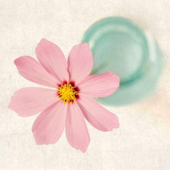 He encontrado este interesante anuncio de Etsy en https://www.etsy.com/es/listing/77812868/cosmos-flower-photography-print-flower