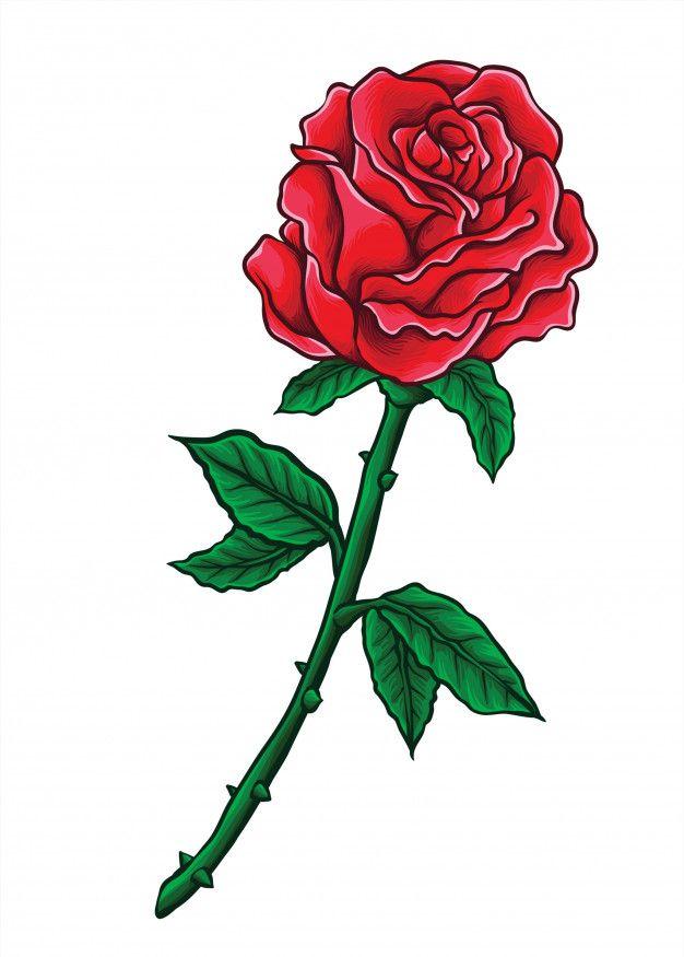 valentine rose vector valentines roses drawing motorrad vektor schildkröte