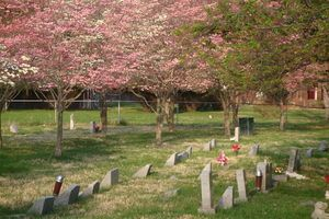 Aspin Hill Pet Cemetery in Silver Spring Maryland