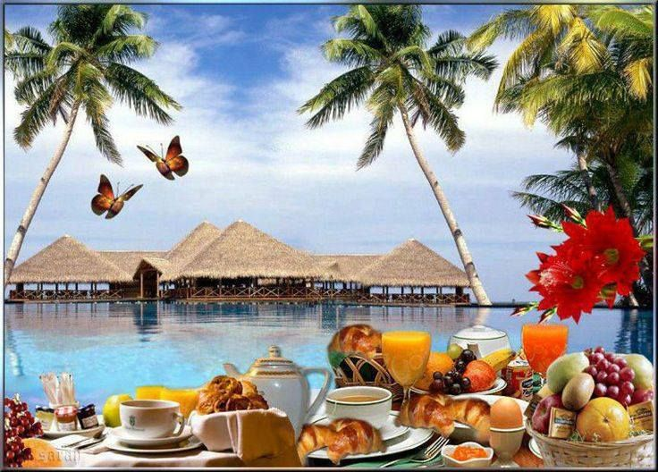 personnalité ajonc 7 mars 2018 Bravo Camille 61 Ae5a82c406ff22ae3cd087c12cee8960--hawaiian-breakfast-tropical-paradise