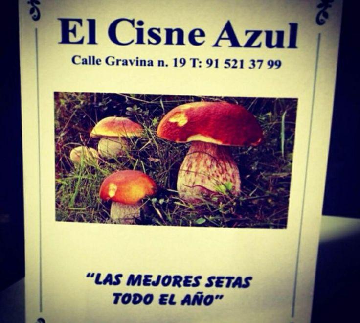EL CISNE AZUL, 7* Estrellas Javielin. Las mejores setas de Madrid
