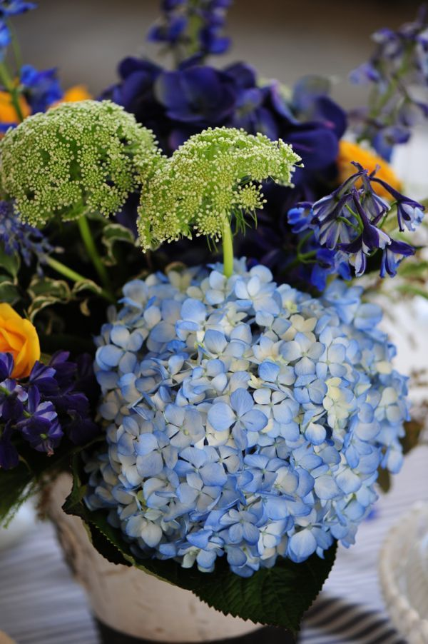 French Country Farm Inspiration :: 2012 Cedarwood Style ShowBlue Hydrangea, Country Farm