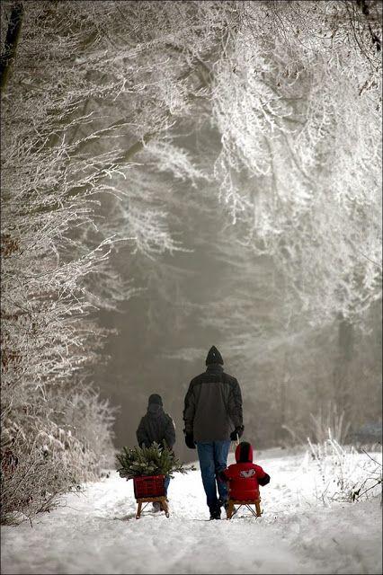 The perfect winter night