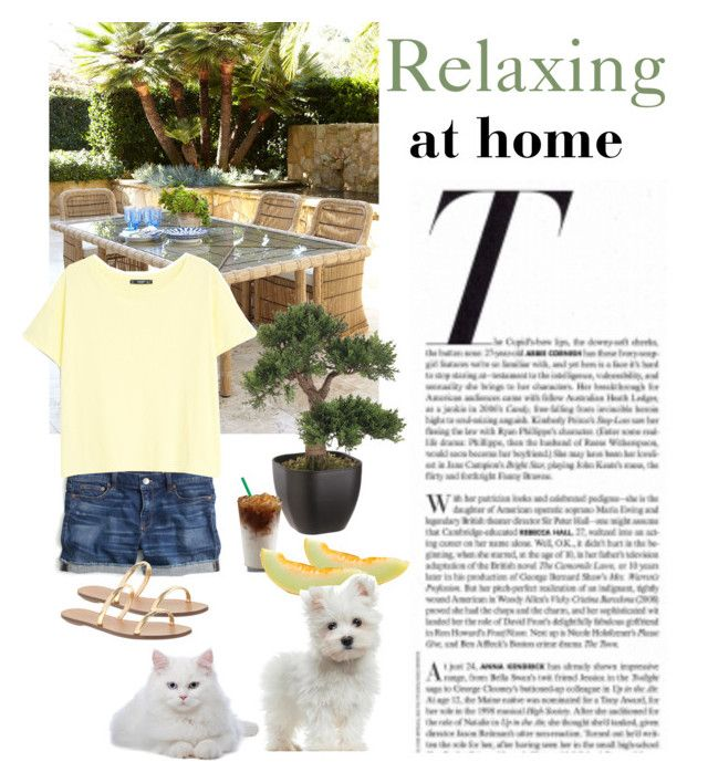 """Relaxing with my pets at home..."" by dezaval ❤ liked on Polyvore featuring Vanity Fair, J.Crew, MANGO and Magnet & Steel"