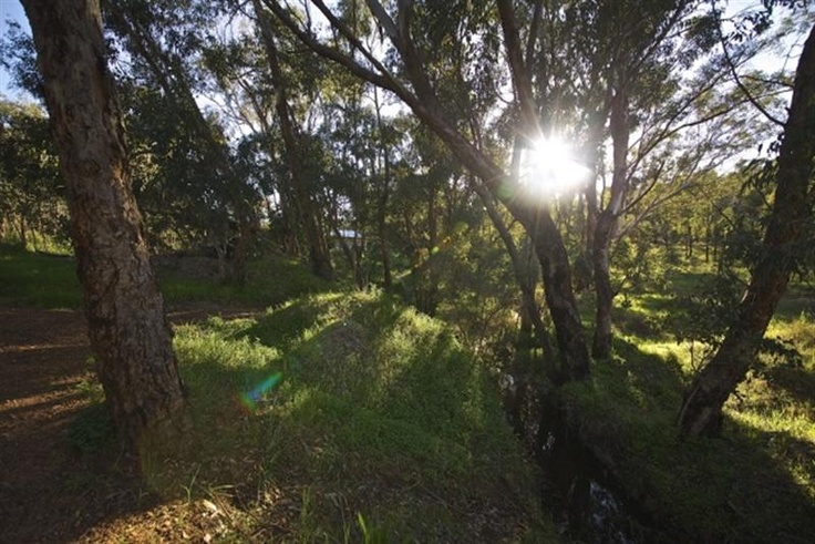 3 STUNNING BLOCKS AVAILABLE IN GREENMOUNT HILL  Build your lifestyle home in the Darling Ranges.  3 Green Title Blocks Ready to Build on - Deep Sewered, Electricity, Water and Phone - Ready    55 Coongan Avenue, Greenmount- 535 sqm $299k  53 Coongan Avenue, Greenmount- 674 sqm $295k  4 Pritchard Road, Greenmount 483 sqm $289K     For more information contact Peter Taliangis on 0431 417 345 http://www.realtyone.com.au/property.asp?pid=273007