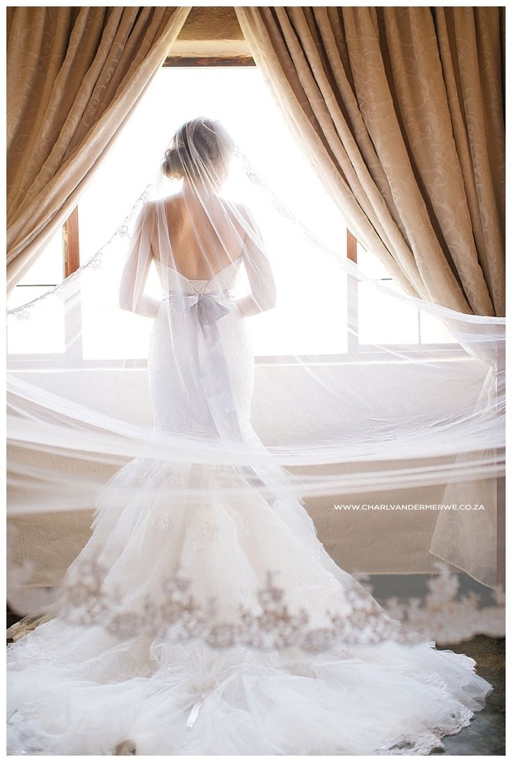 Beautiful Bride with veil and lace