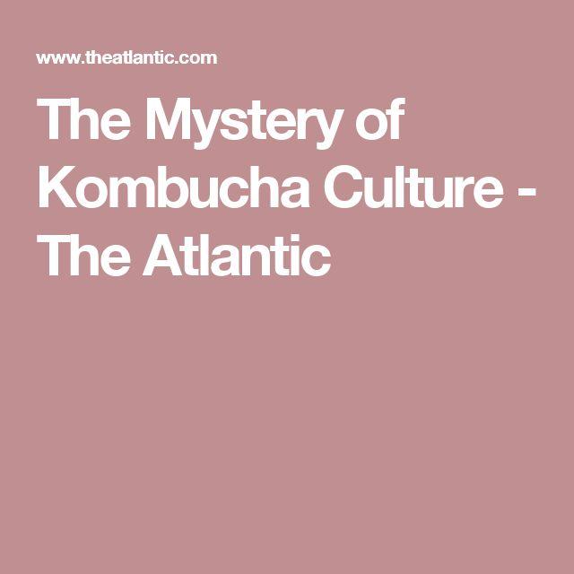 The Mystery of Kombucha Culture - The Atlantic