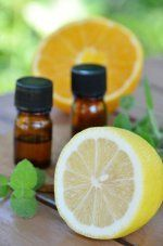 There are many ways to use The Thieves Oil Recipe. Highly antibacterial…