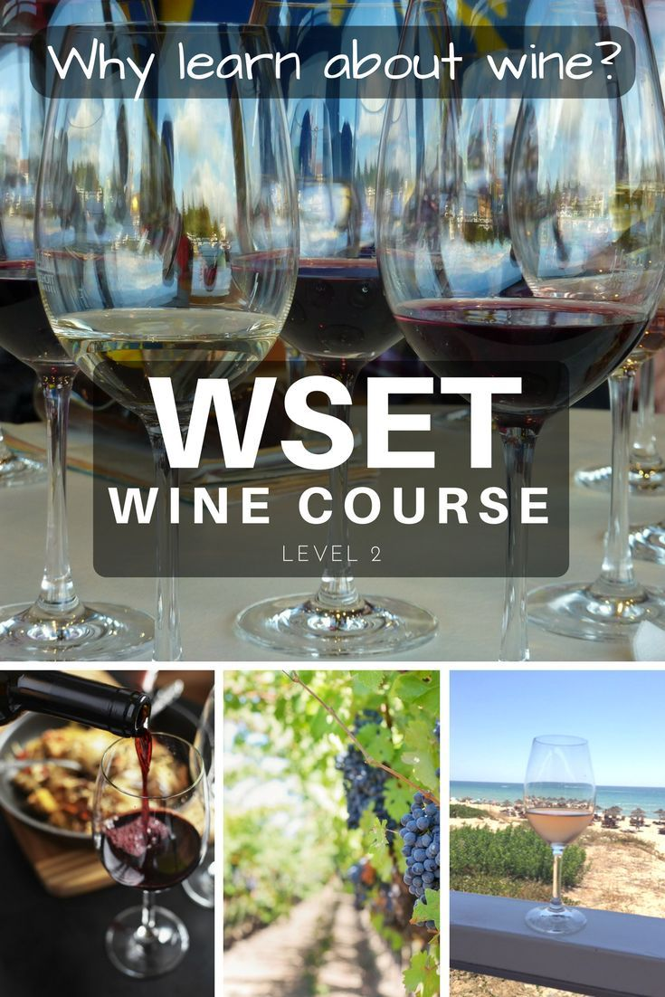 Why Wine? WSET Wine Course Level 2 by Emma Eats & Explores