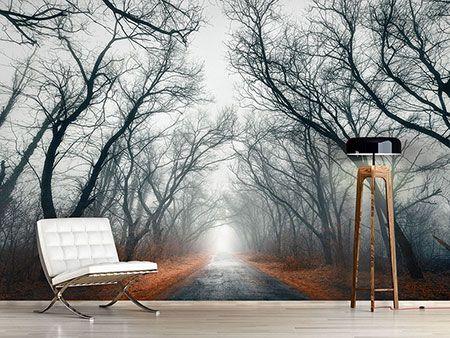 Raumansicht Wohnzimmer Fototapete Mysteriöse Stimmung im Wald