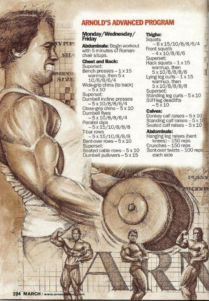 Best 25 arnold workout plan ideas on pinterest arm exercises find this pin and more on health fitness tips giuseleonardi by thebestofleo malvernweather Choice Image