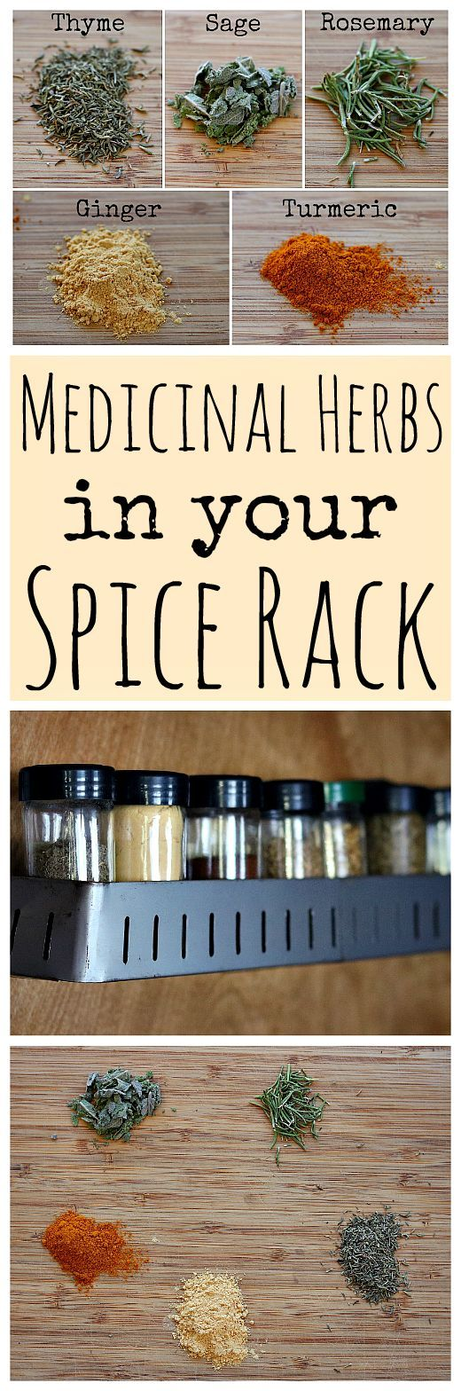 Here are five common herbs and spices in your spice rack that are medicinal!