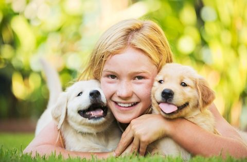 Girl with Large Breed Puppies