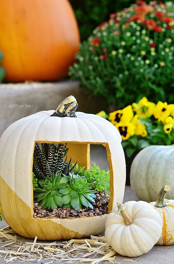 EASY DIY for fall! Gold faux pumpkin planter filled with succulents at TidyMom.net