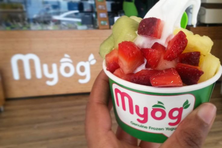 Whenever a company launches a new product that is sugar-free I immediately become skeptical about the artificial sweeteners which are very often more unhealthy than the actual sugar.  GOOD news @myog_sa just launched a new sugar-free recipe for their plain frozen yogurt which is ABSOLUTELY delicious and healthy! They use stevia a 100% natural sweetener to sweeten the frozen yogurt. The sugar substitute is extracted from the stevia plant. It is grown naturally grown in Brazil and Paraguay…