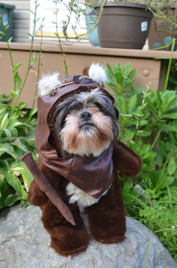 How cute and funny is this? lol Ewoks. Furry Brown Dog Halloween Costume/Hood by sewdoggonecreative, $45.99
