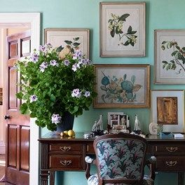 Real Homes: Holker Hall