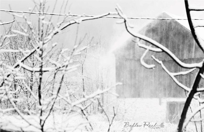 Snow Scene in Fenelon Falls Area, Kawartha Lakes.  Thanks to Baddow Road Photography for sharing !