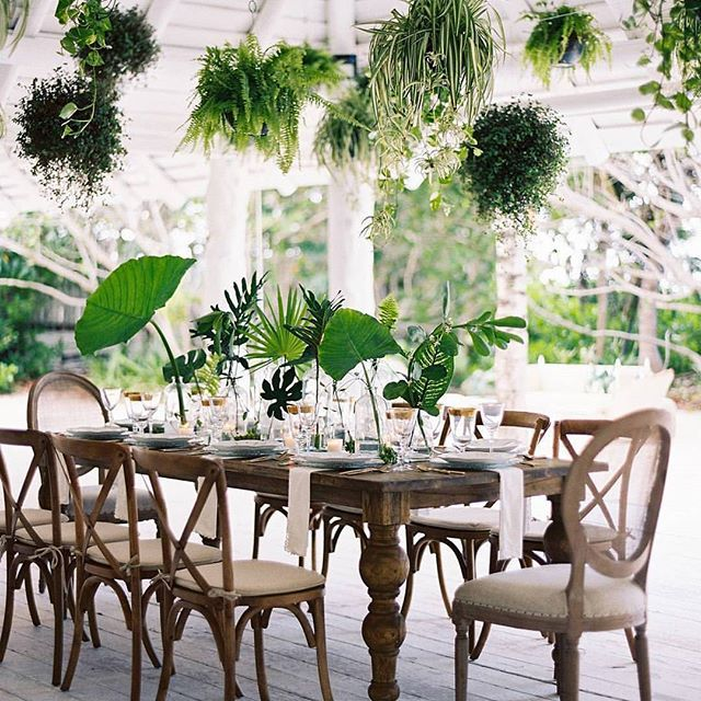 Love this super green vibrant wedding setting! Can't go wrong with green centrepieces and hanging plants. If you want something similar for your big day, let's chat 🌿🌿🌿💚💚💚 #repost from @greenweddingshoes - their account is awesome, check it out now!