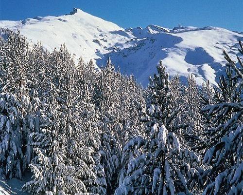 Andalucía de nieve: Sierra Nevada http://goo.gl/qojxEl