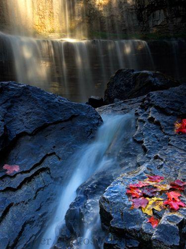 Webster Falls  Hamilton, Ontario