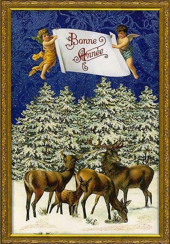 Christmas Post Сards ( Germany) —   Snowy Reindeer (558x800):