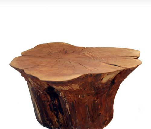 Tree stump coffee table around the house pinterest for Wonderful tree stump coffee table