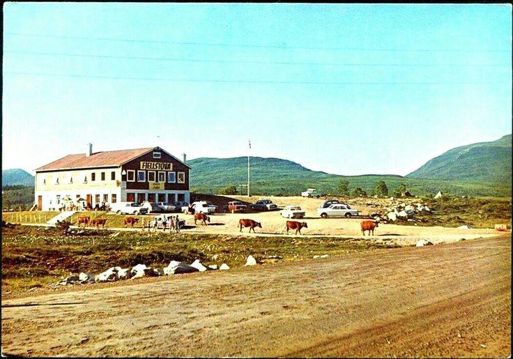 Møre og Romsdal Ørskog kommune Fjellstova Ørskogfjellet 1970-tallet Utg Henriksen, Vestnes