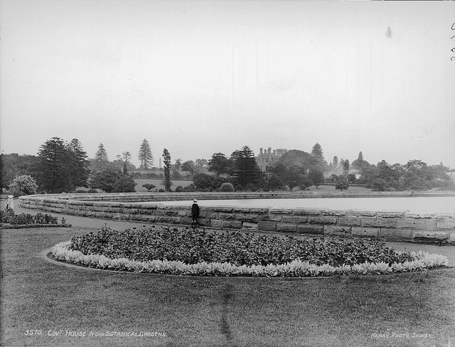 Looking out to the harbour from Botanic Gardens: late 1800's