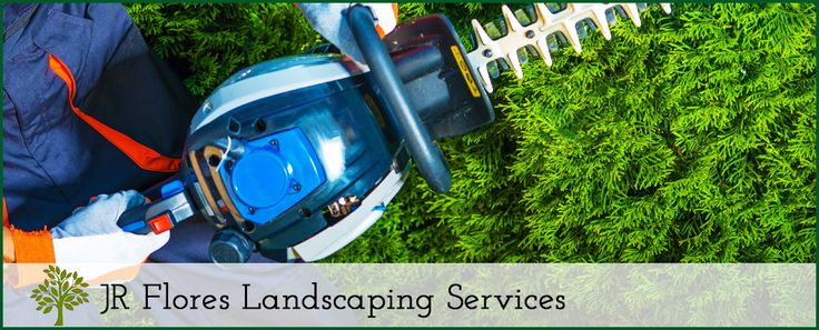 Tree Service at JR Flores Landscaping Services  #LawnMaintenance #LandscapeManagement #LandscapingContractor #LawnCareService #Landscaping #TreeService #TreeTrimming #TreePruning #TreeStumpRemoval #ResidentialMowingServices #CommercialMowingServices #Highlands #Highlands77562