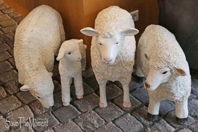 Jolinas Welt: Wohlfühlen im Hotel Lamm in Singen Schafe