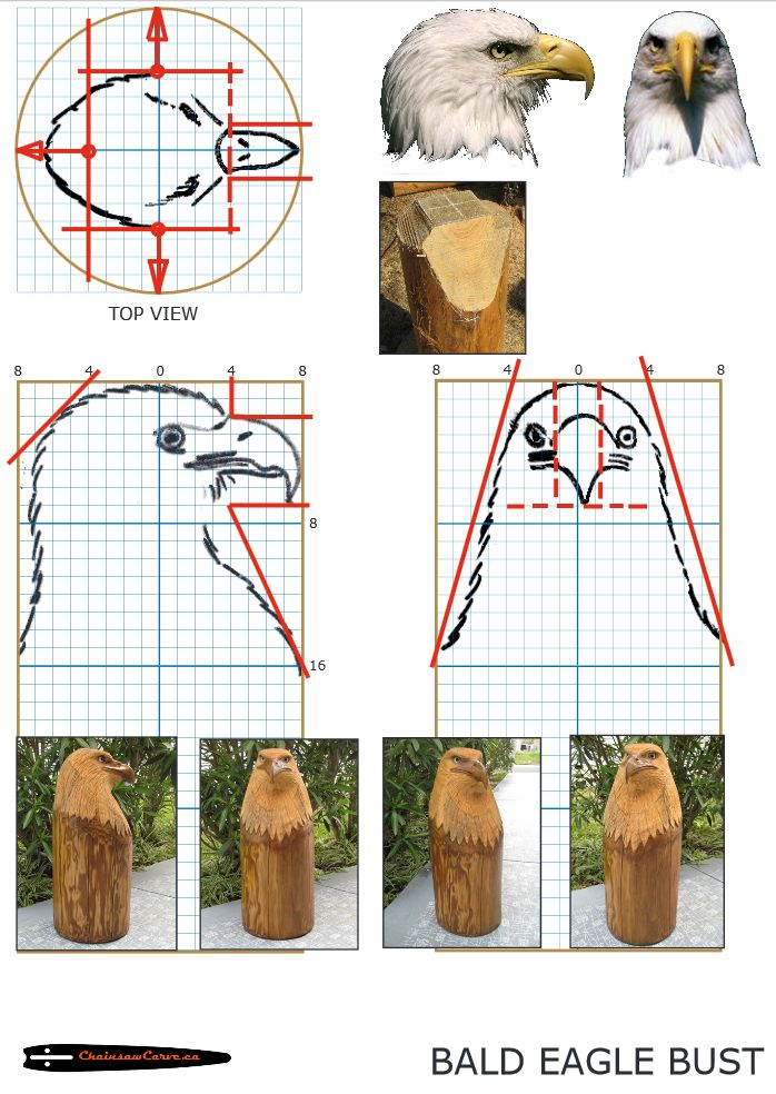 Chainsaw carving patterns free Eagle Bust. https://www.facebook.com/Bill.Sculptures.tronconneuse.Quebec
