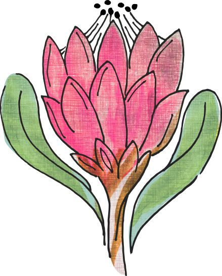 Verve Flowers. Icon for logo.