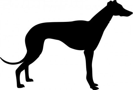 greyhound templates | Greyhound silhouette Vector clip art - Free vector for free download