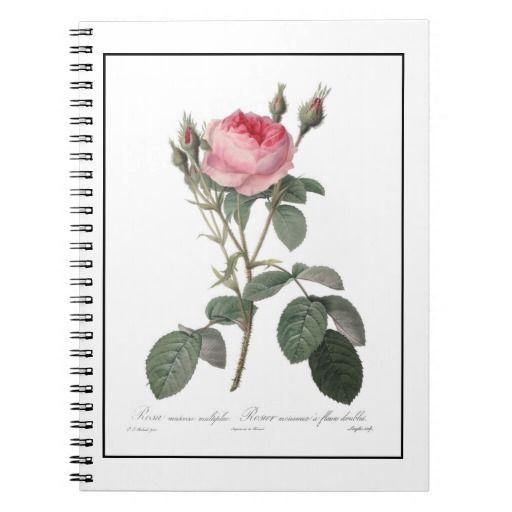 Pale pink vintage roses painting spiral notebook