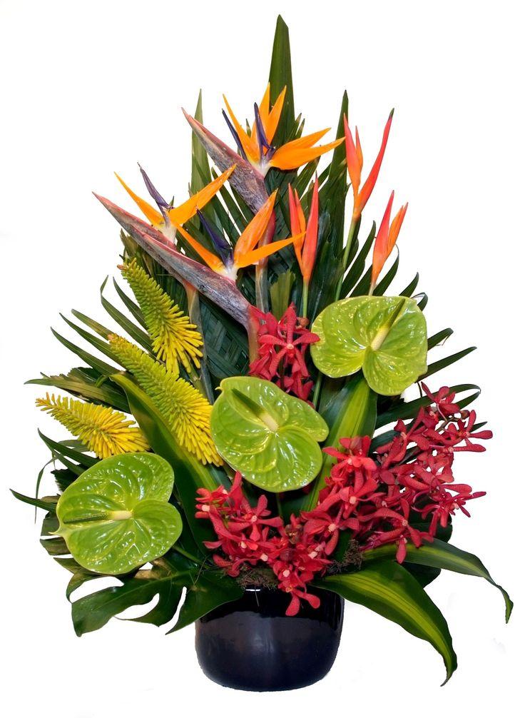 Tropical arrangement - Donvale Flower Gallery