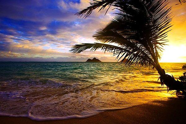 ハワイにある天国の海という名の美しすぎるビーチ『ラニカイ・ビーチ』 | wondertrip