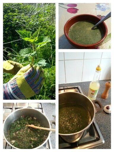 BRANDNETELSOEP Ingrediënten: - 500 gr brandnetels - 1 ui, in stukjes - 1 teentje knoflook, fijngeperst - olijfolie - 1 liter bouillon - zout en peper - 2 eetlepels citroensap (- 1 dl room: voor gebonden soep). Bereiding: Handschoenen aan! Brandnetels goed wassen. Harde takjes en oudere bladeren verwijderen. Blaadjes fijn snijden of hakken. Bouillon maken. Ui en knoflook in de olie bereiden. Brandnetels en uien door bouillon roeren en soep minstens 10 minuten laten doorkoken. Soep met…