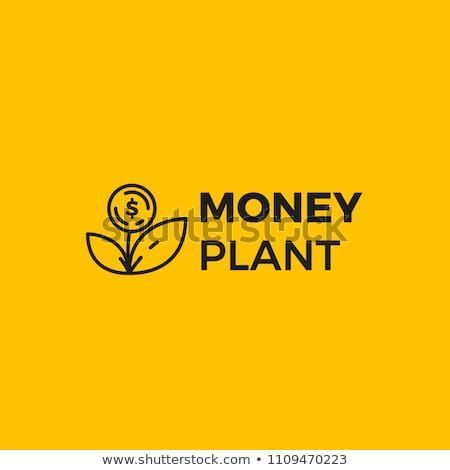 Money plant logo. Growth of investments and investments. Trust Fund logotype. Li – Money Plants