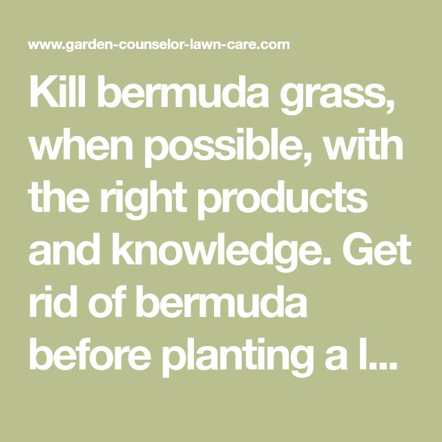 Kill bermuda grass, when possible, with the right products and knowledge. Get rid of bermuda before planting a lawn, or in other areas, with this full series of articles.